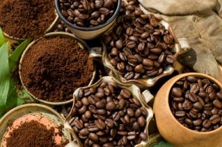 kaffeesorten-bohnen