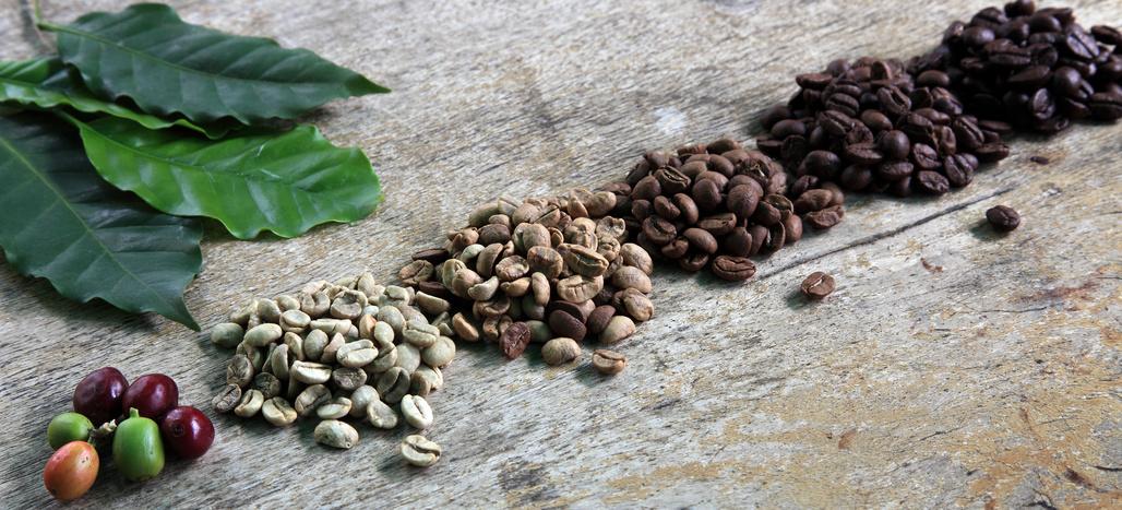 bio-fairtrade-kaffee