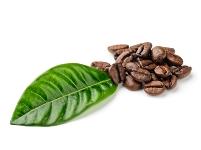 guter-kaffeeYkdTxQJdaFX1o
